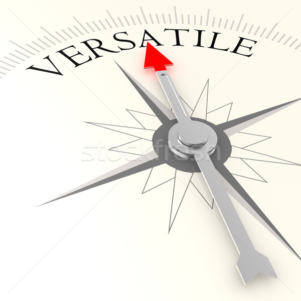 Versatile compass Stock photo © tang90246