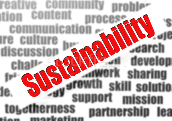 Stock photo: Sustainability word cloud