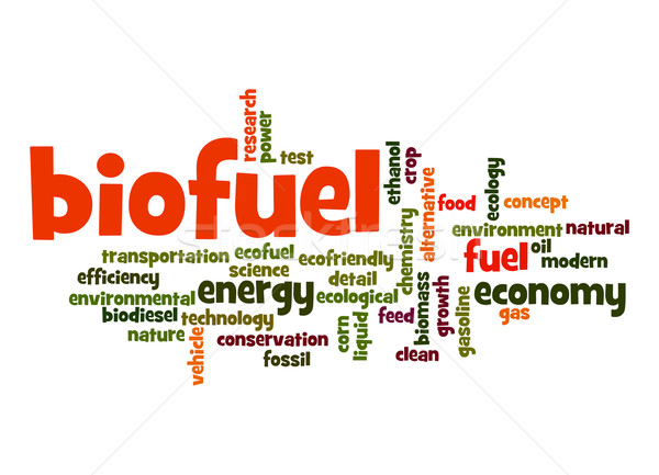 Biofuel word cloud Stock photo © tang90246
