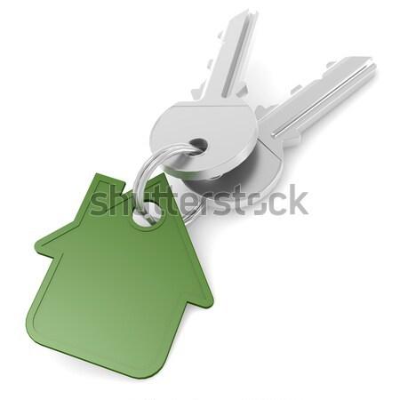 синий дома ключевые изображение оказанный Сток-фото © tang90246