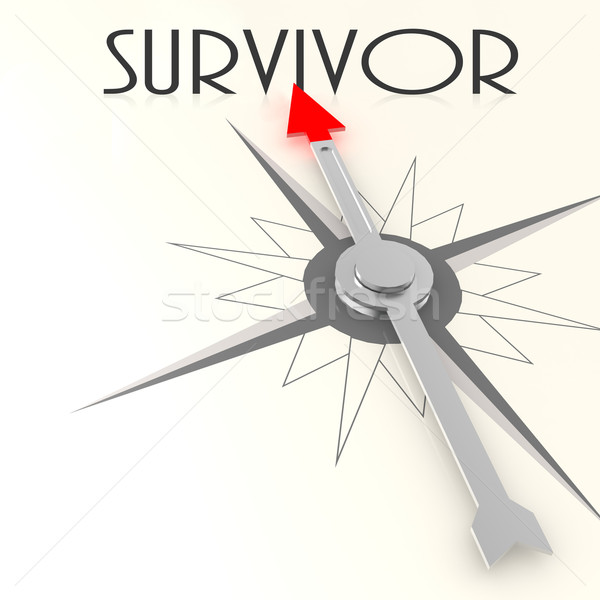 Compass with survivor word Stock photo © tang90246