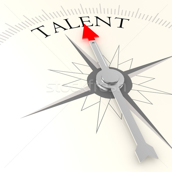 Talent compass Stock photo © tang90246