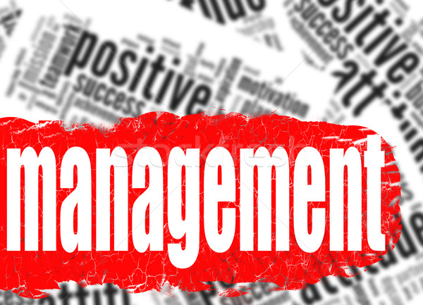 Word cloud management business sucess concept Stock photo © tang90246