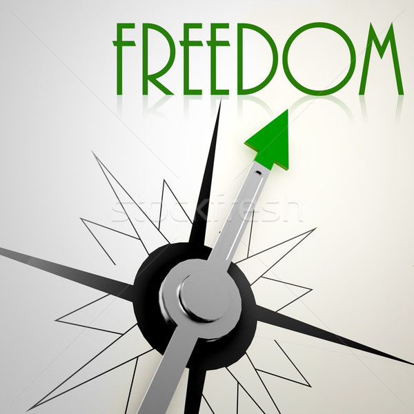 Freedom on green compass Stock photo © tang90246