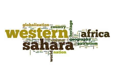 Westerse sahara woordwolk business wereld afrika Stockfoto © tang90246