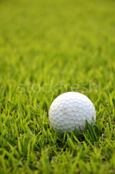 грязные мяч для гольфа трава зеленый грязи игры Сток-фото © tang90246
