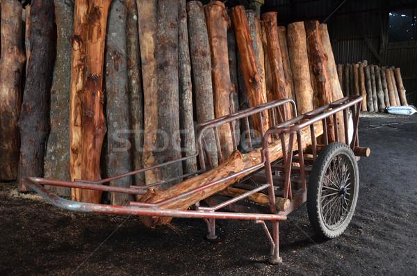 Mangrove tree at charcoal factory Stock photo © tang90246