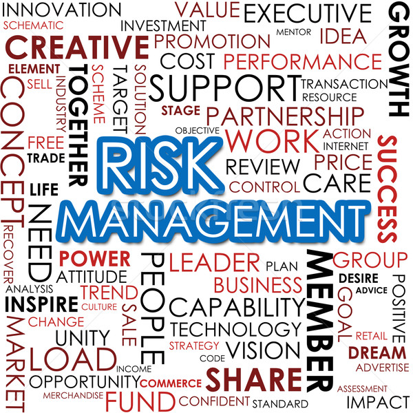 Risk management word cloud Stock photo © tang90246