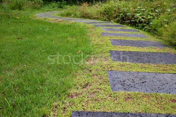 путь каменные кирпича травой поле ведущий вверх Сток-фото © tang90246