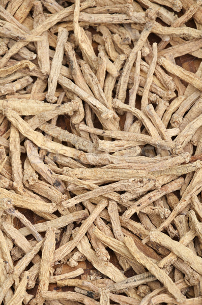 Dry Ginseng roots   Stock photo © tang90246
