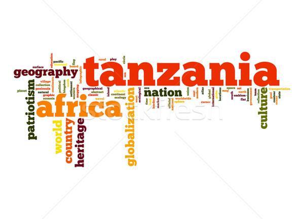 Tanzánia szófelhő üzlet világ Afrika felhő Stock fotó © tang90246