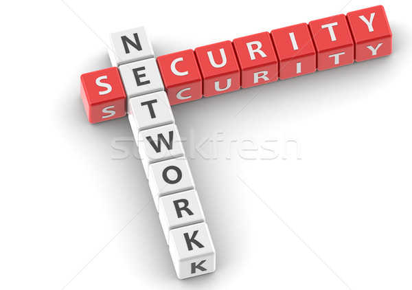 Buzzwords network security Stock photo © tang90246