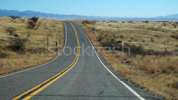 Scenic of Highway 163 through Monument Valley, Arizona Stock photo © tang90246