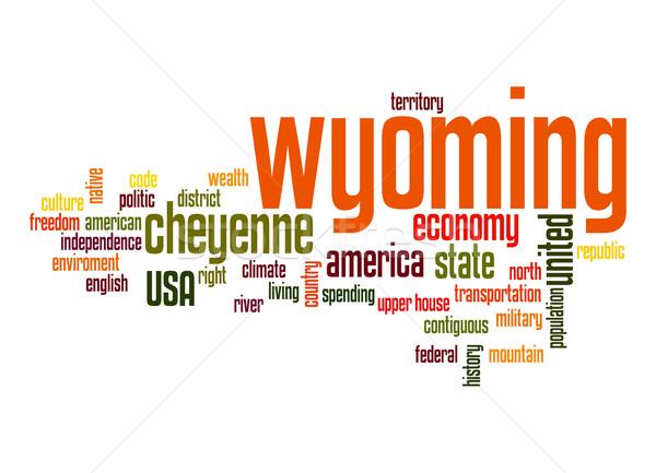 Wyoming woordwolk wolk vrijheid geschiedenis grafische Stockfoto © tang90246