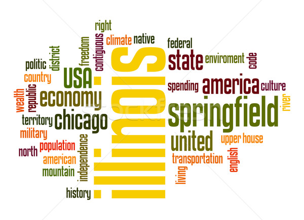 Illinois word cloud Stock photo © tang90246