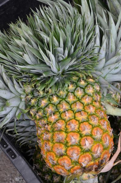 Ananas tropische vruchten markt verkoop achtergrond zomer Stockfoto © tang90246