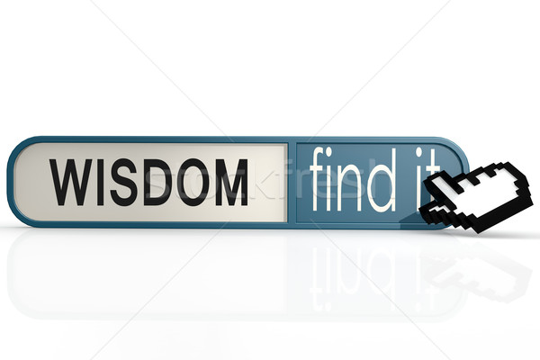 Wisdom word on the blue find it banner Stock photo © tang90246