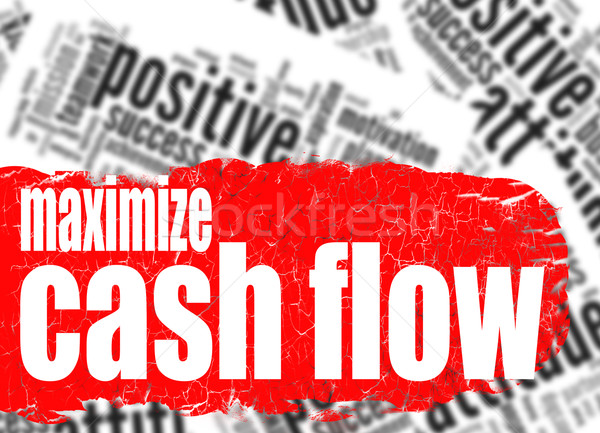 Word cloud maximize cash flow Stock photo © tang90246