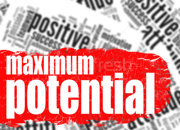 Word cloud maximum potential  Stock photo © tang90246