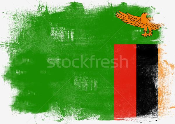 флаг Замбия окрашенный щетка твердый аннотация Сток-фото © tang90246