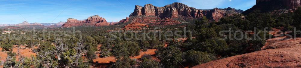 мнение дуб ручей каньон Аризона пейзаж Сток-фото © tang90246