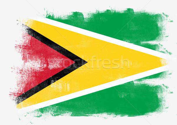 Zászló Guyana festett ecset szilárd absztrakt Stock fotó © tang90246
