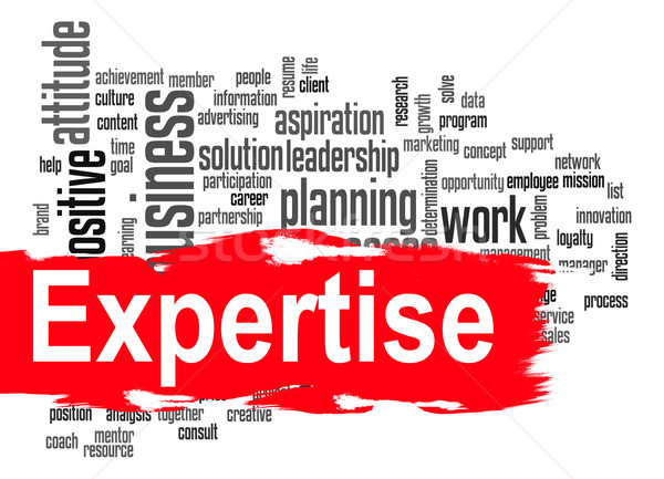 Expertise word cloud with red banner Stock photo © tang90246