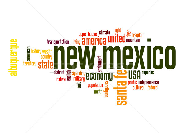 New Mexico word cloud Stock photo © tang90246