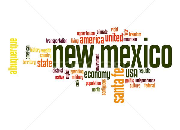Нью-Мексико слово облако облаке свободу история графических Сток-фото © tang90246