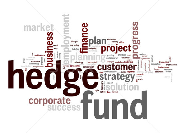 Hedge fund word cloud Stock photo © tang90246