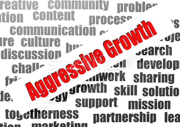 Aggressive growth word cloud Stock photo © tang90246