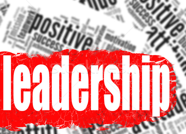 Word cloud leadership business sucess concept Stock photo © tang90246