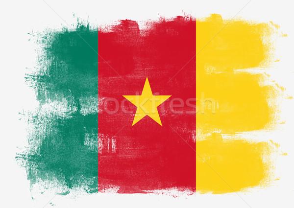 Banderą Kamerun malowany szczotki solidny streszczenie Zdjęcia stock © tang90246