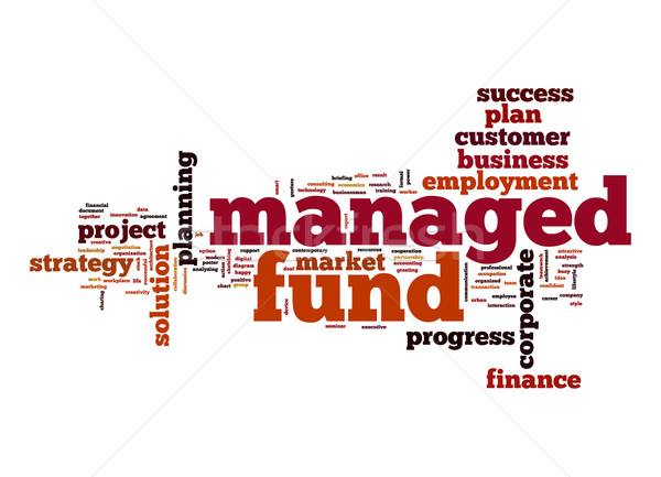 Managed fund word cloud Stock photo © tang90246