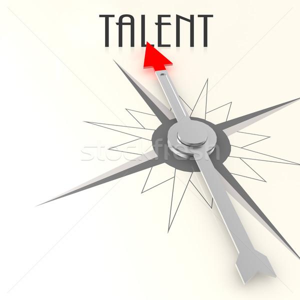Iránytű tehetség szó kép renderelt mű Stock fotó © tang90246