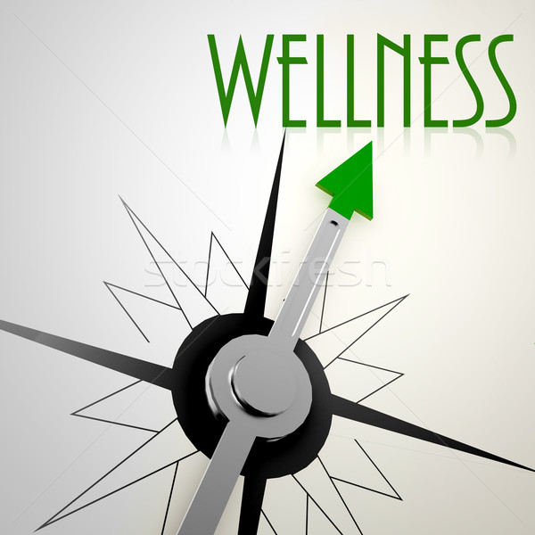Wellness on green compass Stock photo © tang90246