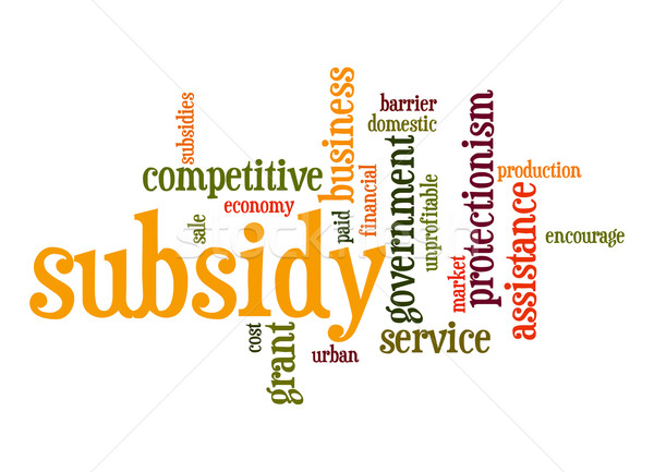 Subsidy word cloud Stock photo © tang90246