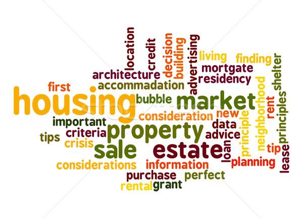 Housing Market word cloud Stock photo © tang90246