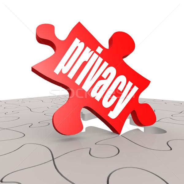 Privacy parola puzzle immagine reso Foto d'archivio © tang90246