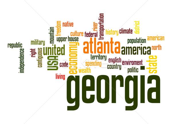 Грузия слово облако облаке свободу история голосования Сток-фото © tang90246
