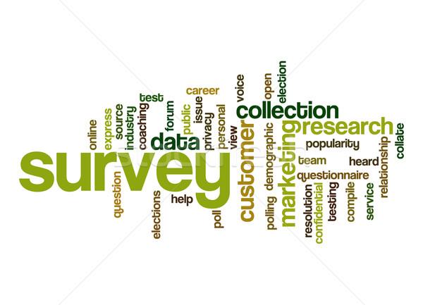 Survey word cloud Stock photo © tang90246