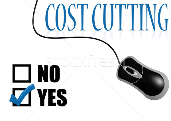 Cost cutting check mark Stock photo © tang90246