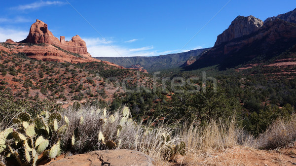Stock photo: Red Rock State Park, Sedona