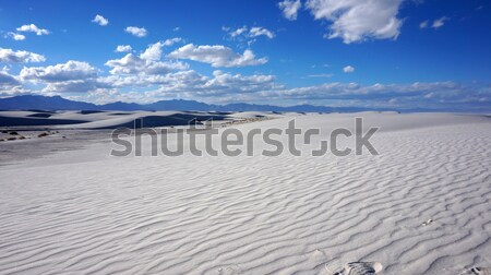 Beyaz New Mexico çöl gökyüzü bulutlar doğa Stok fotoğraf © tang90246