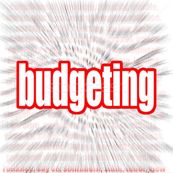 Költségvetést készít szófelhő kép renderelt mű használt Stock fotó © tang90246