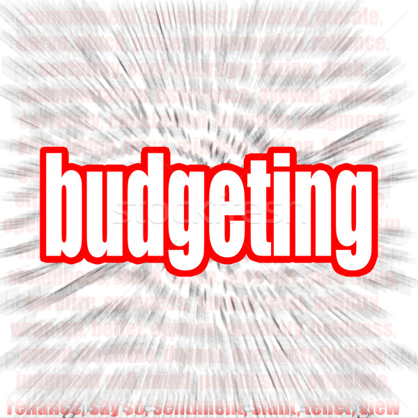 Budgeting word cloud Stock photo © tang90246