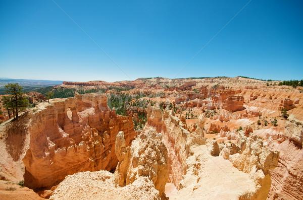 Bryce Canyon Stock photo © tangducminh