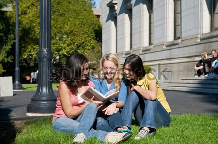 Öğrenciler eğitim açık grup çalışma doğa Stok fotoğraf © tangducminh