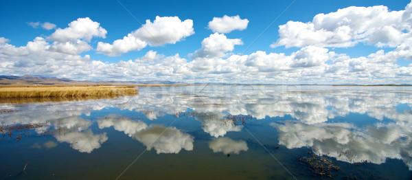 çiçek göl yansıma güzel gökyüzü yeşil Stok fotoğraf © tangducminh