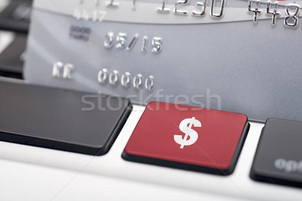 знак доллара бизнеса технологий знак Сток-фото © tangducminh
